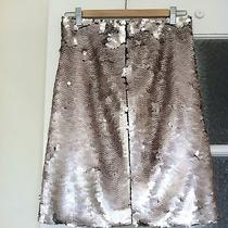 Zara Blush Nude Sequin Skirt Size M Nwot Photo