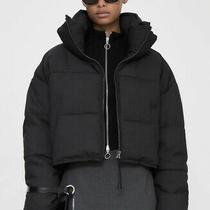 Zara Contrast Puffer Jacket. Anthracite/black. Size Xs. Bnwt Photo