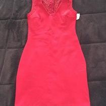 Zara Dress With Lace Back Photo
