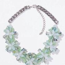 Zara Flower Necklace Photo