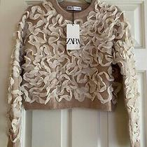 Zara Flutter Cropped Sweater Blush Pink Sz Small Photo