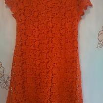 Zara Girls Red Dress Size 12 Photo