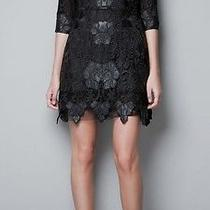 Zara Lace and Leather Dress Photo