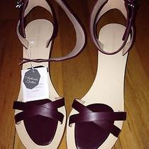 Zara Lacquered Leather Mini Wedge Nib - Us 9  Photo