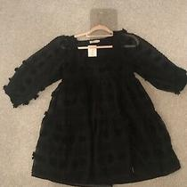 Zara Look Women Black Dress Size M Gorgeous Brand New With Tags Photo