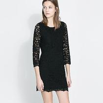Zara Nwt Black Lace Dress Size M  Photo