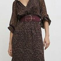 Zara Printed Dress With Belt Bnwt Photo