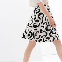 Zara Printed Skirt With Belt ( Cos & Other Stories Acne ) Photo