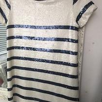 Zara Sequin Stripe Dress  Photo