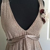 Zara Stylish Gorgeous Layers Light Expresso Party Dress Ml Usa Photo