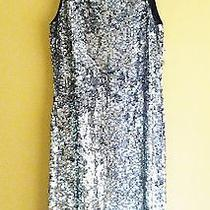 Zara Trafaluc Silver Full Sequin Cocktail Dress All Saints Style S Xs 0 2  Nwt Photo