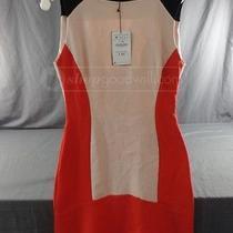 Zara Woman Tricolor Block Red/black/blush  Dress Women's Size Us M Nwt Photo