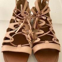 Zara Women's Sz 8 Euro Sz 39 Blush Pink Roman Gladiator Sandals With Back Zipper Photo