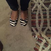 Zebra Print Ballerina Flats Photo