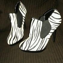 Zebra Print High Heels Photo
